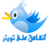 tweet_birs_copy